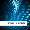 Soulful Housev