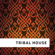 Логотип радиостанции Tribal House